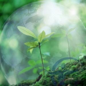 Страховка от загрязнения окружающей среды