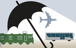 юридические лица, заручившиеся официальным разрешением на перевозку пассажиров и грузов