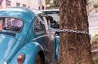 автомобиль прикован цепью к дереву