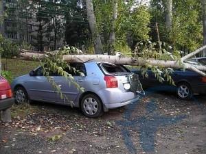 Страхование имущества от последствий стихийных бедствий