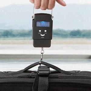 вес чемодана